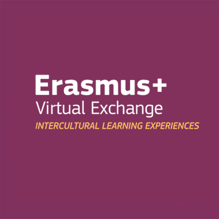 Logo Virtual Exchange